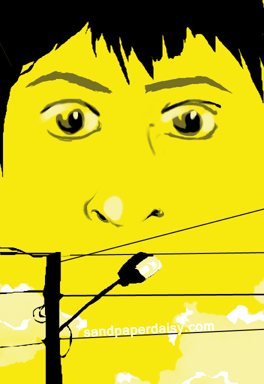 a boy's frightened face hovers over the powerlines against a sickly yellow sky.  The Sky over dog street.