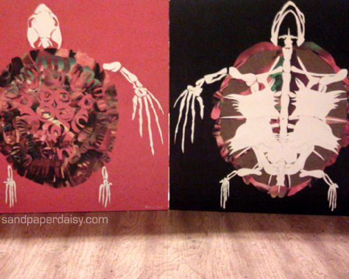Two views of a turtle, created by gluing hundreds of bits of paper onto a painted wooden board.