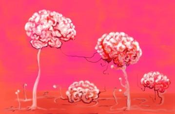 cropped-brainforest.jpg