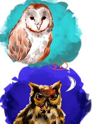 owls by sandpaperdaisy