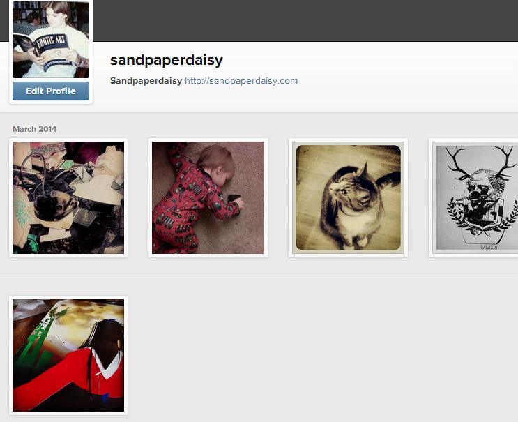 sandpaperdaisy on instagram