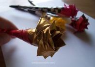 rose sandpaperdaisy 03