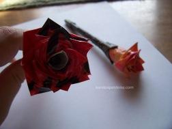 rose sandpaperdaisy 06