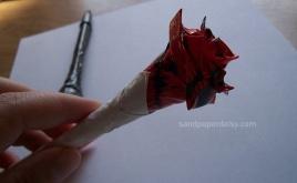 rose sandpaperdaisy 07