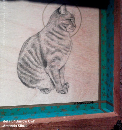 Burrow Owl detail by Amanda Sibrel