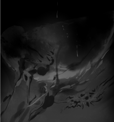 moonroots_sandpaperdaisy