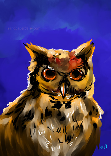 horned owl_sandpaperdaisy