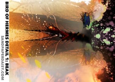 Bird-of-Hermes_detail1_sandpaperdaisy