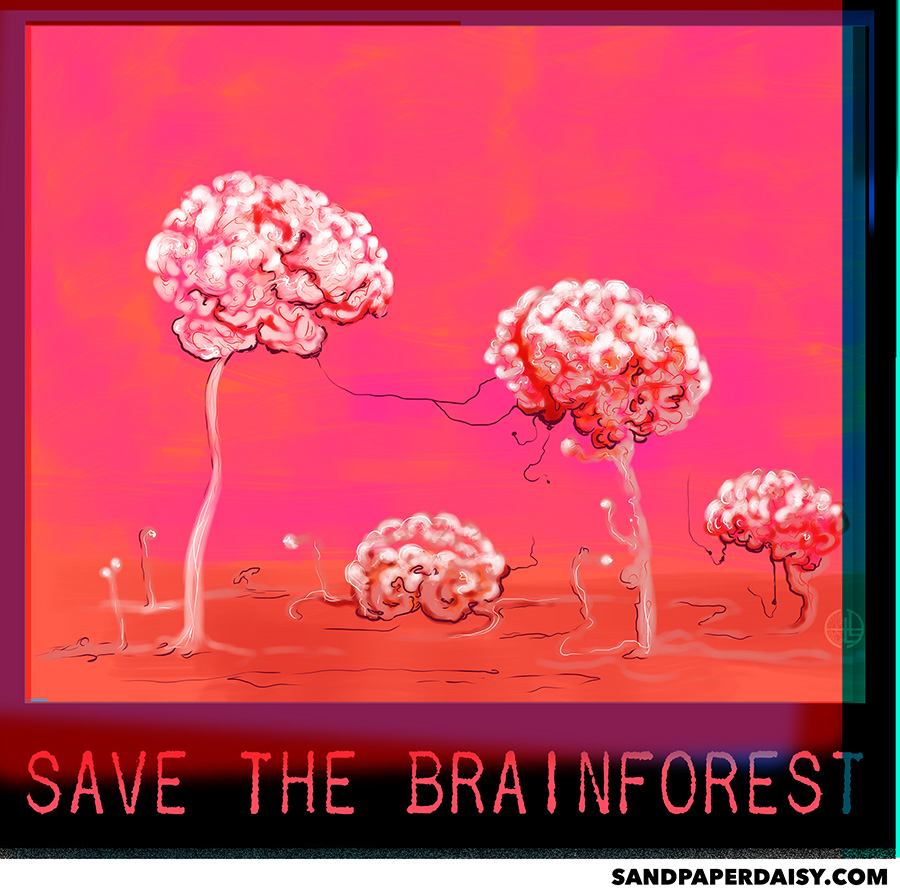 Save-The-Brainforest_sandpaperdaisy