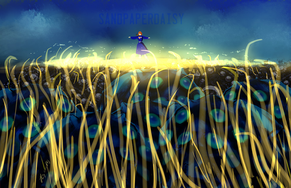 Nausicaa-Fields-Gold_sandpaperdaisy