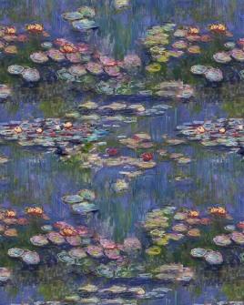 Lillies01-Preview_sandpaperdaisy