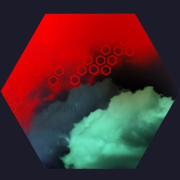 hexagon04_sandpaperdaisy