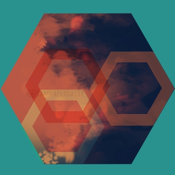 hexagon14_sandpaperdaisy