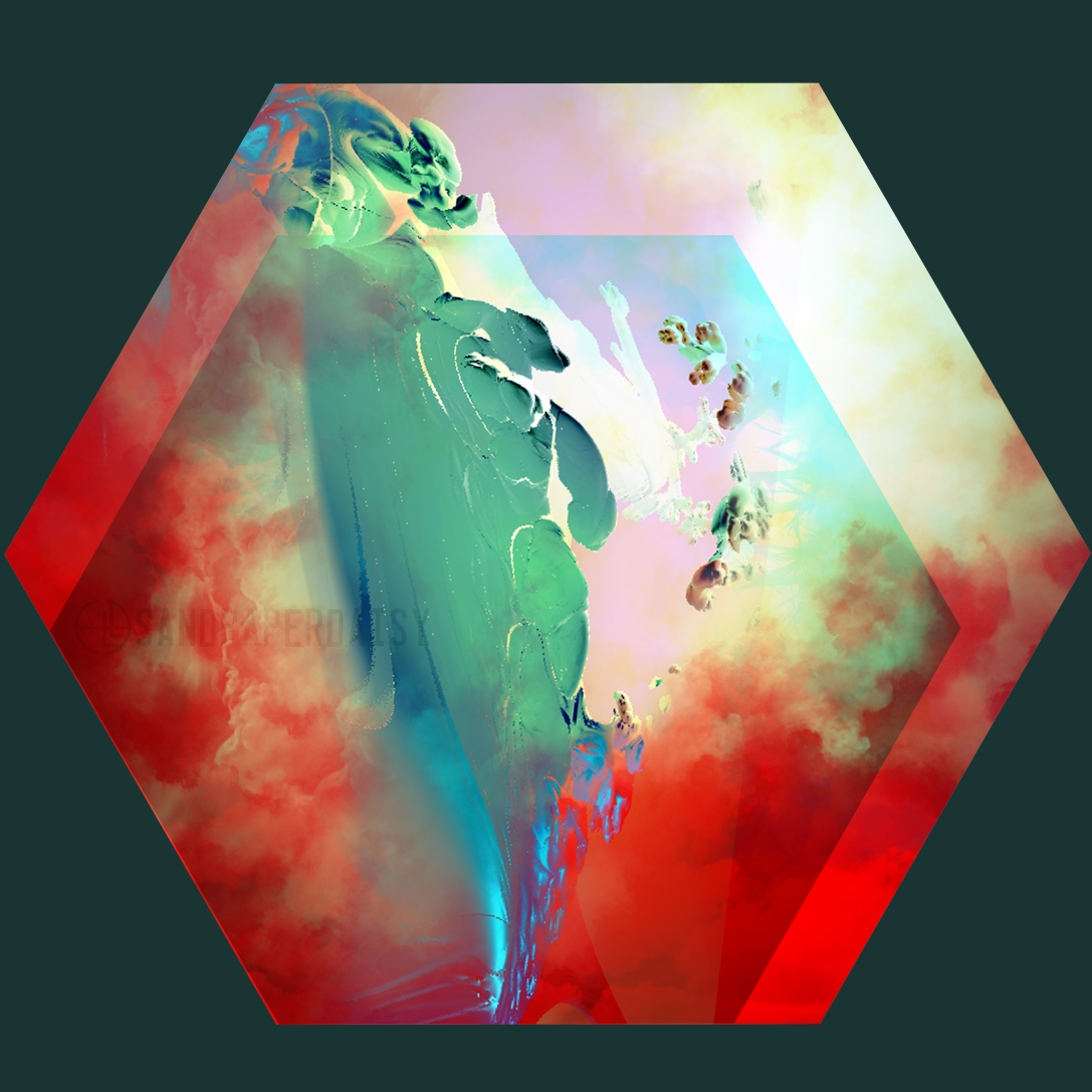 hexagon40_sandpaperdaisy