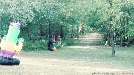YART1019_spooky-trail_sandpaperdaisy