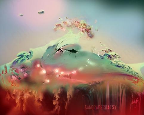Malacandra-sm_sandpaperdaisy